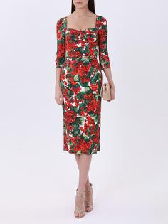 Платье-футляр с цветами Dolce & Gabbana