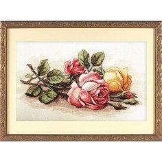 """Набор для вышивания Dimensions """"Срезанные розы"""""""