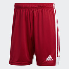 Шорты Tastigo 19 adidas Performance