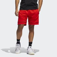 Шорты Donovan Mitchell D.O.N. Issue #2 adidas Performance