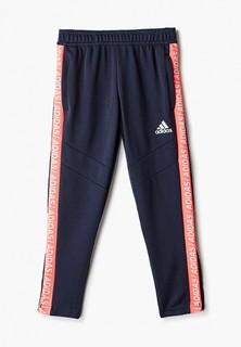 Брюки спортивные adidas TIRO19 PNT TP Y