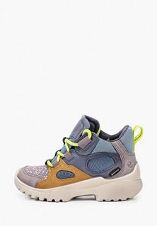 Ботинки Ecco XPERFECTION, шнурки 2 пары