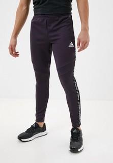 Брюки спортивные adidas TIRO19 PNT TP