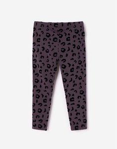 Серые леггинсы с леопардовым принтом для девочки Gloria Jeans