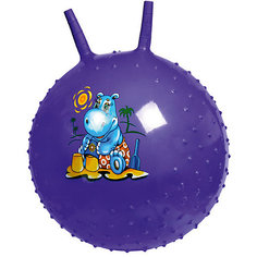 Массажный гимнастический мяч Bradex