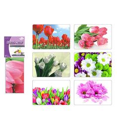 Пленка-стикер Цветы защитная Мультидом