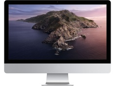 Моноблок APPLE iMac 21.5 (2020 г.) MHK03RU/A (Intel Core i5 2.3 GHz/8192Mb/256Gb SSD/Iris Plus Graphics 640/Wi-Fi/Bluetooth/Cam/21.5/1920x1080/macOS Catalina)