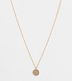 Ожерелье премиум-класса с позолотой 14 карат, с подвеской в виде знака зодиака Рыбы Reclaimed Vintage inspired
