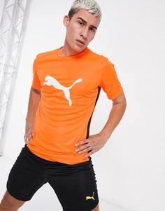 Оранжевая футболка с логотипом Puma Football-Оранжевый