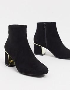 Черные ботинки на блочном каблуке с золотой отделкой Lipsy-Черный