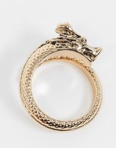 Золотистое кольцо с элементом в виде дракона и перекрестным дизайном River Island-Золотистый