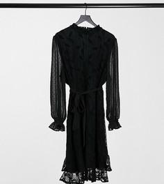 Черное кружевное платье мини на поясе с высоким воротом и длинными рукавами Little Mistress Plus-Черный