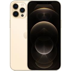 Смартфон Apple iPhone 12 Pro Max 128GB Gold (MGD93RU/A) iPhone 12 Pro Max 128GB Gold (MGD93RU/A)