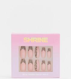 Накладные ногти Shrine X ASOS Exclusive - Wild Things-Многоцветный