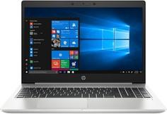 Ноутбук HP ProBook 455 G7 2D235EA (серебристый)
