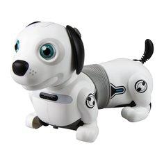 Интерактивная собака Silverlit Дэкел Джуниор цвет: серый