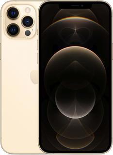Мобильный телефон Apple iPhone 12 Pro Max 256GB (золотой)