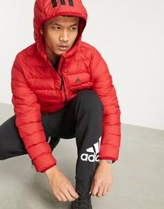 Красный пуховик с капюшоном для активного отдыха adidas Outdoors-Черный цвет
