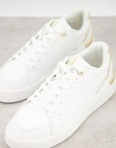 Белые кроссовки с золотистой отделкой River Island-Белый