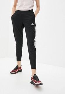 Брюки спортивные adidas TIRO21 TR PNT W