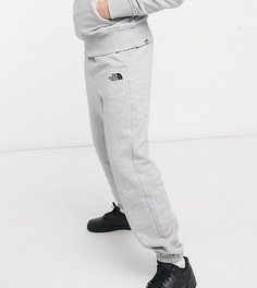 Серые oversized-джоггеры The North Face Oversized Essential-Серый