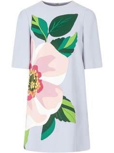 Dolce & Gabbana платье мини с цветочной аппликацией