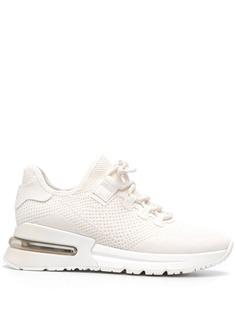 ASH трикотажные кроссовки на шнуровке