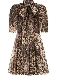 Dolce & Gabbana платье с леопардовым принтом и бантом