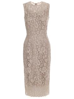 Платье-футляр кружевное Dolce & Gabbana