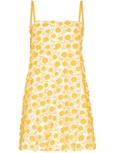 Three Graces платье мини Clementine с цветочной аппликацией
