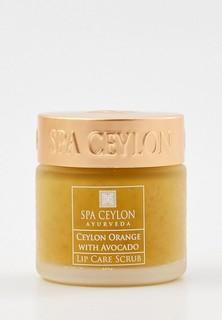 Скраб для губ Spa Ceylon Цейлонский апельсин и Авокадо, 25 г