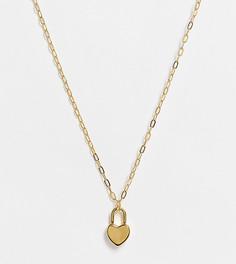 Ожерелье с позолотой 14 карат и маленьким замочком-сердечком ASOS DESIGN-Золотистый