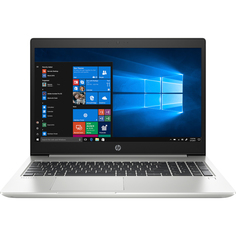 Ноутбук HP ProBook 455 G7 Silver (214C7ES)
