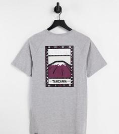 Серая футболка The North Face Faces эксклюзивно для ASOS-Серый
