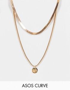 Золотистое ярусное ожерелье с подвеской в виде диска ASOS DESIGN Curve-Золотистый