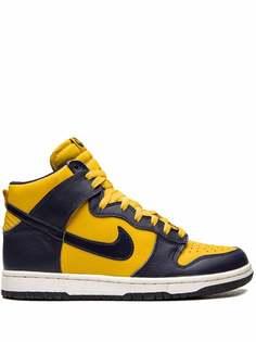 Nike кроссовки Dunk High LE
