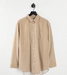 Oversized-рубашка из органического хлопка в бежевую полоску в стиле унисекс Selected Exclusive-Разноцветный