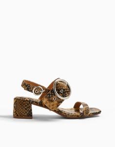 Босоножки наблочном каблуке с пряжкой и светло-коричневым змеиным принтом Topshop-Многоцветный