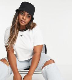 Белая укороченная футболка adidas Plus-Белый